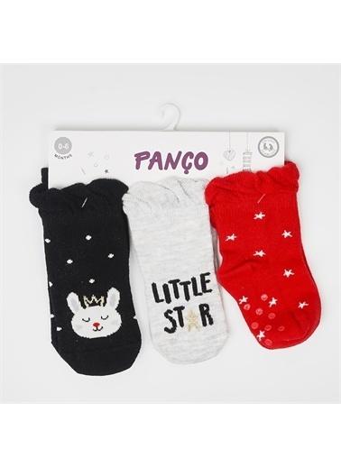 Panço 0-3 Yaş Kız 3 lü Çorap 2012GB11009 Renksiz